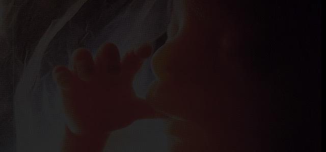 CNBB divulga nota sobre a decisão do STF que permite o aborto de anencéfalos