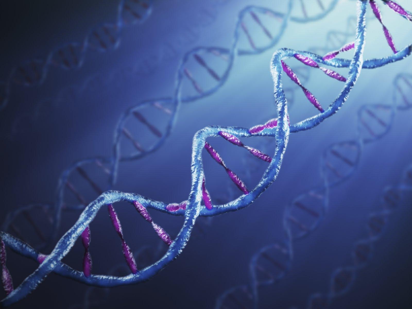 Bioética, um desafio também para os jovens