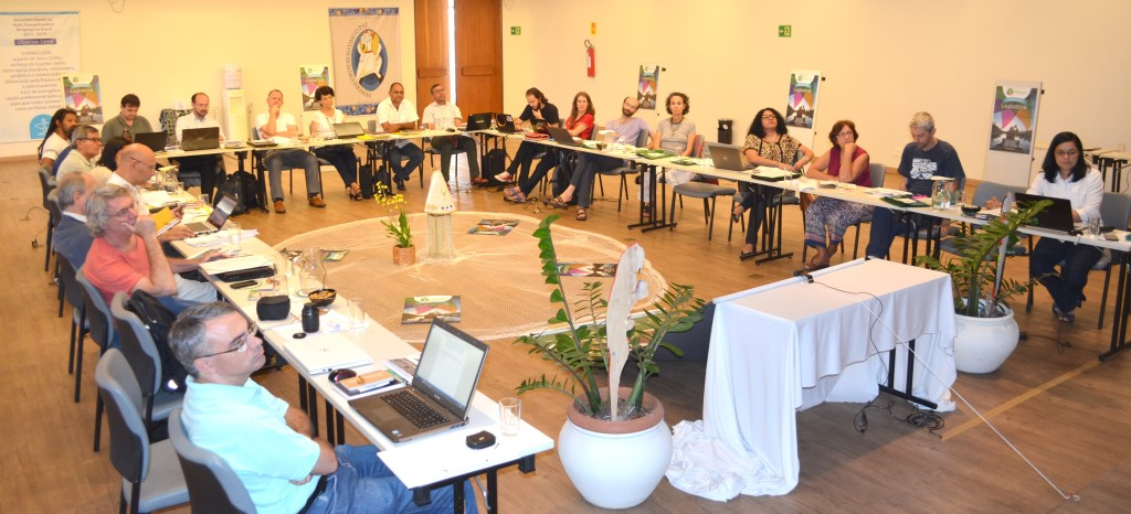 Comitê ampliado da REPAM define ações para os próximos anos