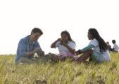 Comissão para a Juventude divulga tema do DNJ 2017