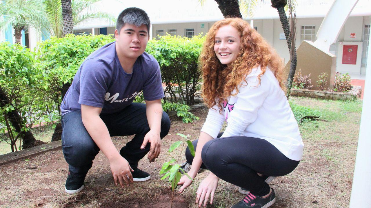Na Semana do Meio Ambiente, estudantes fazem levantamento de moradores interessados em árvores nas calçadas