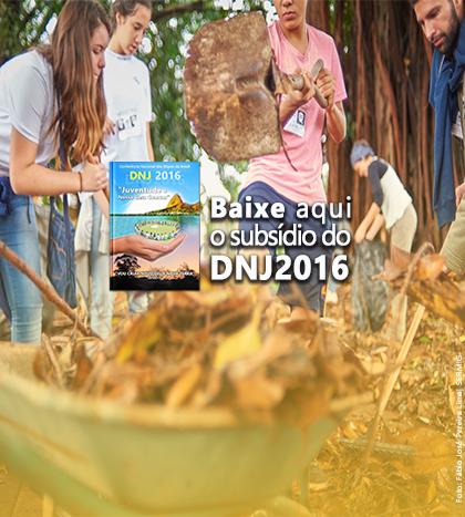 CEPJ lança suplemento para o DNJ 2016