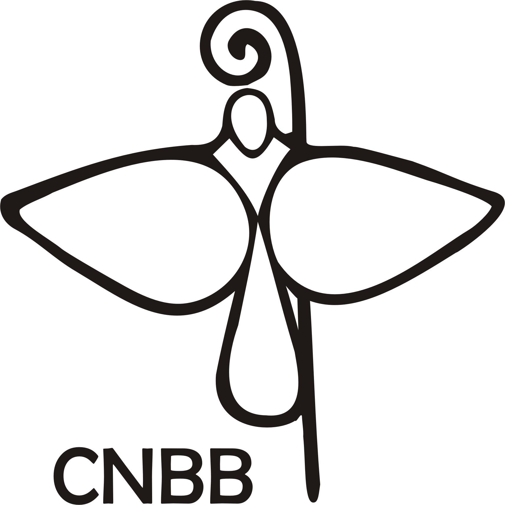 CNBB emite nota contra o aborto diante da decisão do STF
