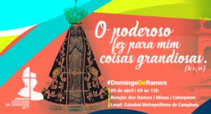 Arquidiocese de Campinas celebra JDJ 2017