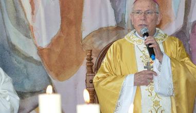 A sabedoria de um bispo: artigos de Dom Hilário