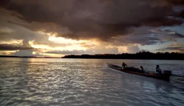 """Campanha """"A Amazônia precisa de você"""" será lançada em 18 de maio"""